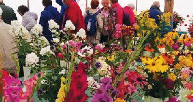 Flower and Produce, Arts & Craft, Things to do Swindon, Wanborough Show